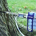 Изображение к статье - Инъекции деревьям